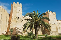 对斯法克斯麦地那的墙壁和塔的看法在斯法克斯,突尼斯 免版税图库摄影