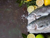 对新鲜的鳟鱼,柠檬,月桂叶,在黑暗的背景的香料 库存照片