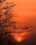 对日落的时间 免版税库存图片