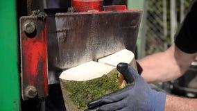 对木柴为冬天,关闭的工作者分裂的木头  人与木砍的机器一起使用 锯切口木头 日志分离机sp 影视素材