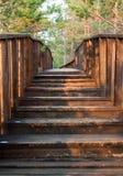 对木桥的台阶 库存照片