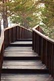 对木桥的台阶 免版税库存图片