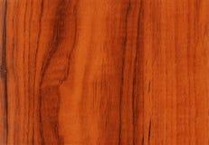 对木的核桃的背景纹理 免版税库存照片