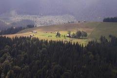 对杉木森林和农场的山景 风景 免版税库存图片
