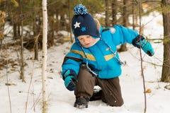 对枝杈散步感兴趣的儿童男孩在一个冬天森林公园 免版税库存照片