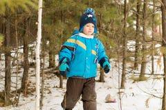 对枝杈散步感兴趣的儿童男孩在一个冬天森林公园 免版税库存图片