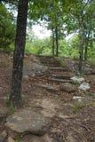 对森林小山顶-垂直的岩石步 库存图片