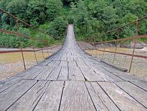 对森林的桥梁 库存照片
