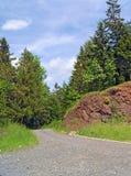 对森林道路和岩石的门户 库存图片