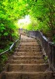 对森林,爱侣湾国家公园, Kanchanbur,泰国的楼梯 库存照片