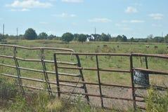对母牛牧场地的生锈的门 免版税库存图片