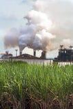 对氨基苯甲酸二制造业 库存照片