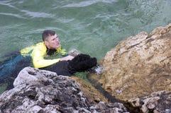 对水的狗抢救 免版税图库摄影