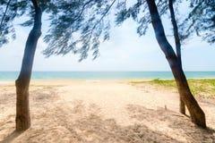 对沙子热带海滩的方式 库存照片