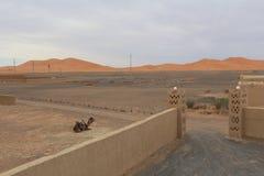 对沙漠的门 免版税库存照片