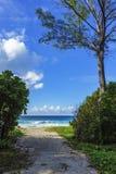 对海滩的方式,警察咆哮,塞舌尔群岛 库存照片