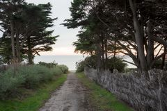 对海滩的路在Préfailles,法国 库存图片