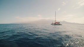 对海表面的看法 美好的海景全景与底部的是远的 两只海豚游泳,跳跃在天际 影视素材