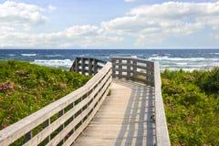 对海洋海滩的走道 免版税库存图片