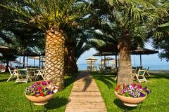 对海滩的入口通过棕榈树胡同, Sithonia 图库摄影
