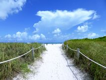 对海滩的入口 库存图片
