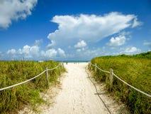 对海滩的入口 免版税库存照片
