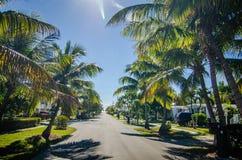 对海滩的方式与棕榈树在基韦斯特岛佛罗里达 免版税库存图片