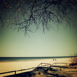 对海滩的方式在含沙沙丘之间 库存图片