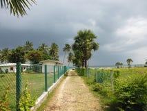 对海滩的方式沿在肮脏的路的篱芭 库存照片