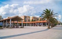 对海滩的棕榈胡同 免版税库存图片
