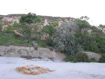 滑对海滩 库存照片