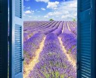 对淡紫色领域的窗口 免版税库存图片