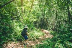 对瀑布的旅行妇女上升的山 免版税库存照片