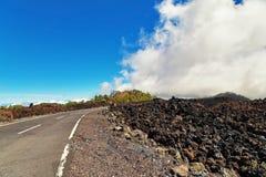 对火山的黄雀色el海岛路teide tenerife 库存照片