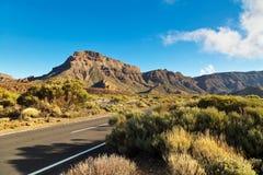 对火山的黄雀色el海岛路teide tenerife 库存图片
