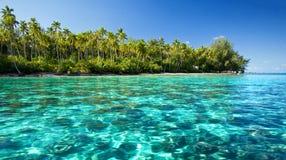 对热带水中的珊瑚岛下块礁石 库存照片
