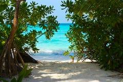 对热带的海滩路 库存图片