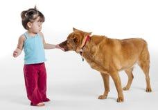 对狗的女孩提供的款待 免版税图库摄影