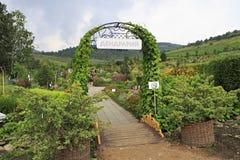 对狗窝树木园开花的谷的门 免版税库存图片