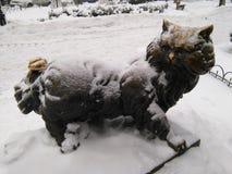对猫Panteleimon的纪念碑在Kyiv 免版税库存图片