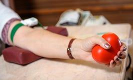 对献血的准备 免版税图库摄影