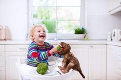 对玩具恐龙的小男孩哺养的硬花甘蓝 库存图片