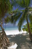 对白色的海滩最佳的入口一沙子 库存图片