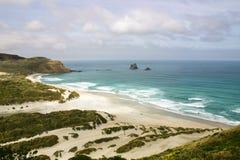 对白蛉海湾, Otago半岛,新西兰的概要 免版税图库摄影