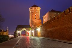 对皇家Wawel城堡的门在克拉科夫在晚上 图库摄影