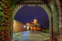 对皇家Wawel城堡的门在克拉科夫 库存图片