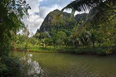 对石灰岩地区常见的地形形成小山的惊人的看法,有鱼的河和 免版税库存照片