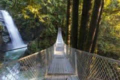 对秀丽的桥梁 库存图片