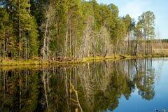 对称山在有一朵美丽的蓝天和蓬松云彩的湖反射了 免版税库存图片