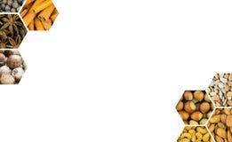 对称菜单设计装饰对称蜂窝角落胡说的森林杏仁腰果和肉桂条 免版税库存照片